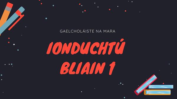 Ionduchtú Bliain 1